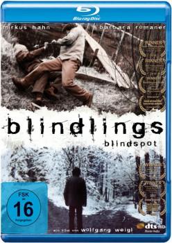 Blind Spot 2009 m720p BluRay x264-BiRD